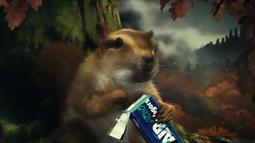 Vigorsol Chewing Gum - The Legend