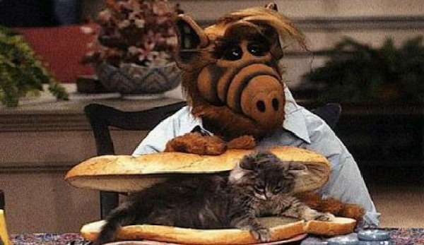 "Casting Sony's Live-Action ""Alf"" Film"
