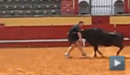 "Getting Speared by a Bull is One of Those ""Sounds More Fun than it Actually is"" Type of Things"