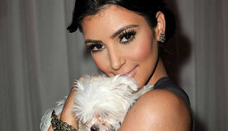 Kim Kardashian Compares Herself to a Dog