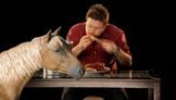 Eat Horse