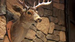 Boulder Lodge: Minnesota's Newest Bar