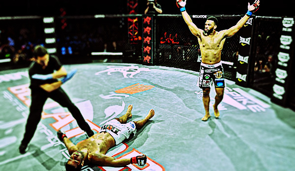 Bellator 61 Highlights Photo