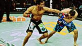 Bellator 78 Highlights