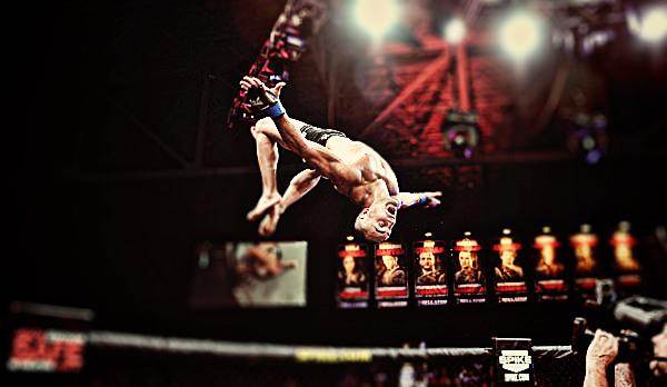 Bellator 66 Highlights Photo