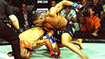 Bellator 72 highlights photo