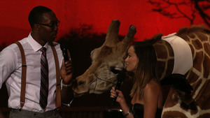 Stanley The Giraffe Interrupts Dwight Howard And Olivia Wilde